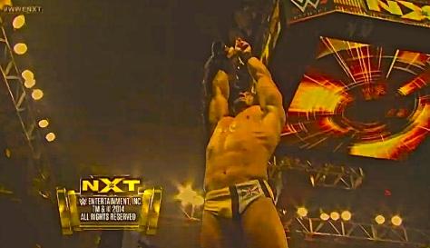 NXT 050114 Adrian Neville 3