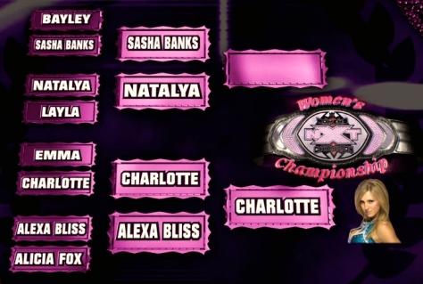 NXT 051514 women's title bracket